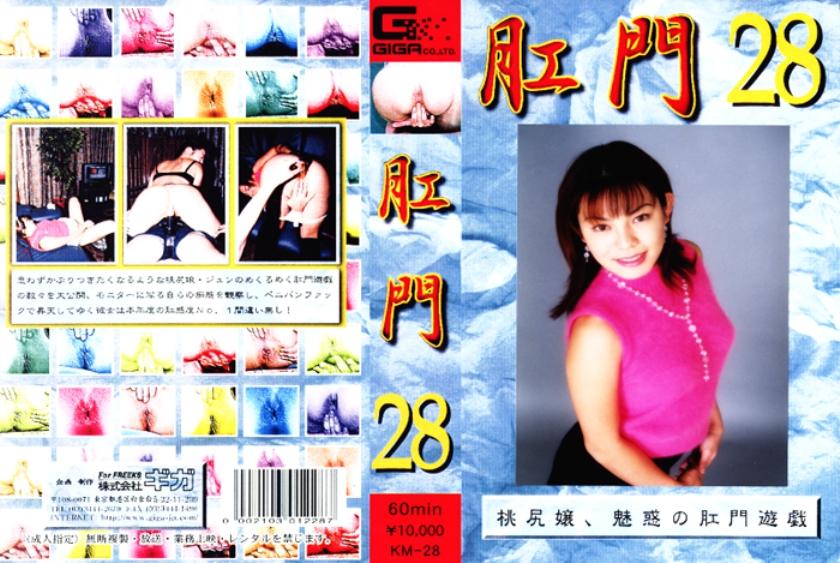肛門 28