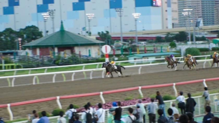 某競馬場で馬好き女子=ウマジョをナンパ!馬並みチ〇ポで荒ぶる男に跨り華麗な騎乗位を披露!天才巨乳ジョッキー誕生の瞬間!!-エロ画像-1枚目